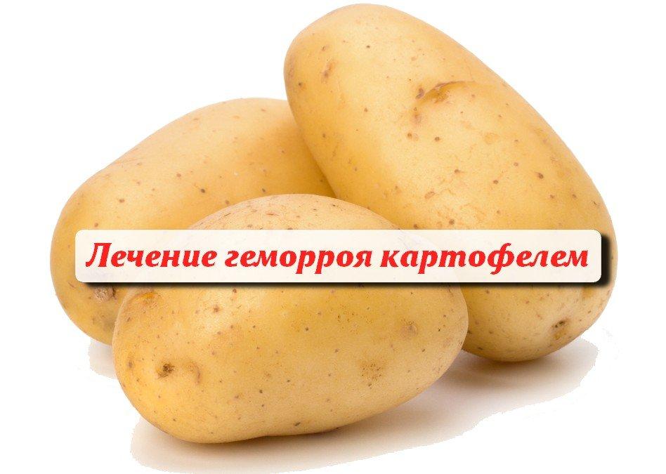 Картофель подходит для лечения геморроя