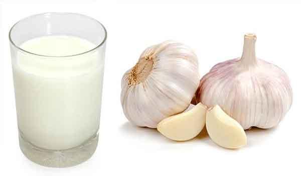 молоко и чеснок при парапроктите