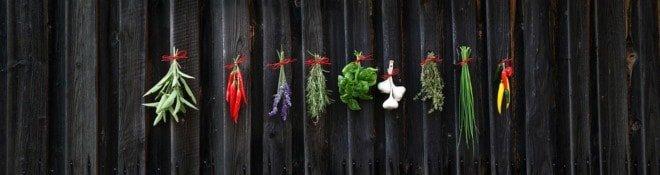 лечебные травы при дисбактериозе